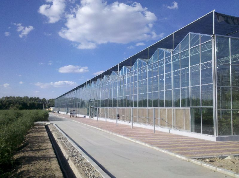 glass greenhouse senhong glass china manufacturer